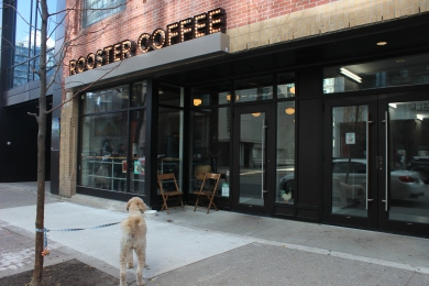 rooster_coffee_toronto